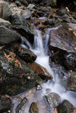 Cascading Copper Creek. Stock Images