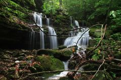 Cascading Deep Forest Waterfall Royalty Free Stock Photo