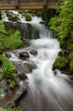 Cascading Falls Royalty Free Stock Photo