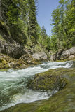 Cascading mountain stream Royalty Free Stock Images