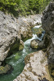 Cascading mountain stream Royalty Free Stock Photo