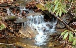 Cascading Mountain Stream Stock Image