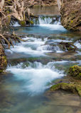 Cascading Mountain Trout Stream Waterfall - Virginia, USA Royalty Free Stock Photography