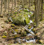 Cascading Mountain Waterfalls in the Woods. Cascading Mountain Waterfalls located in the forest of the Blue Ridge Mountains, George Washington National Forest Stock Photos