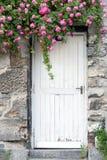 Cascading roses on a garden wall in Paris, France Stock Photos