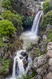 Cascading Saar Waterfalls slashes through Saar river gorge. Spring time in the Golan Heights royalty free stock images