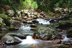 Cascading Stream Royalty Free Stock Image