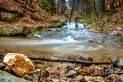 Cascading stream in the forest Royalty Free Stock Images