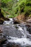 Cascading Sweet Creek Falls Royalty Free Stock Photography