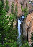 Cascading Tower Falls. High and rugged waterfall, called `Tower Falls`, cascades down the face of a cliff in Yellowstone National Park Royalty Free Stock Images