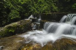 Cascading tropical waterfall. wet and mossy rock, surrounded by green rain forest Stock Images