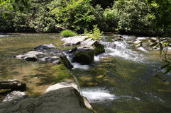 Cascading Water Looking Across a Stream. A view of a cascading stream (Abrams River)located in a lush green forest that is gentling rolling over rocks in smoky stock images