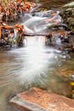 Cascading water of a stream Royalty Free Stock Images