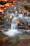 Cascading water of a stream Royalty Free Stock Photography