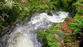 Cascading water waterfall stock footage