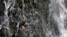 Cascading water waterfall stock video
