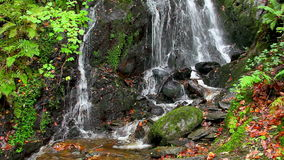Cascading water waterfall stock video footage