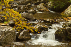 Cascading water with yellow leaves Royalty Free Stock Photography