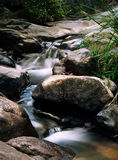 Cascading Waterfall. Smooth water flowing down a small serene waterfall in the rainforest Stock Photography