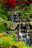 Cascading waterfall. In japanese garden in springtime stock photography