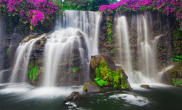 Cascading Waterfall Stock Images
