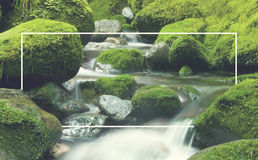 Cascading Waterfall Cascading Atmosphere Greenery Concept Stock Photography