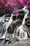 Cascading waterfall with edited foliage colors to look like flowering spring trees Stock Photos