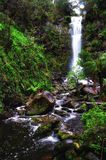 Cascading waterfall in the jungle stock photography