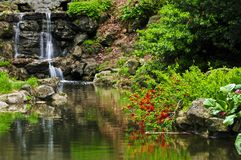 Cascading waterfall and pond. In japanese garden stock images
