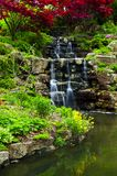 Cascading waterfall and pond. In japanese garden royalty free stock photos