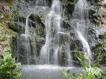 Cascading waterfalls. Taken at Singapore Botanical Gardens.  Coated with mosses and algae Stock Photo