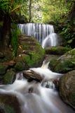 Cascading waterfalls through lush rainforest stock photo