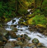 Cascading Waterfalls, Washington State Stock Photography