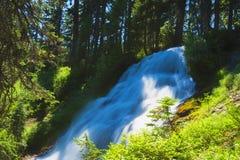 Umbrella Falls Mt. Hood National Forest. Cascading waters of Umbrella Falls cuts through evergreen forest in Mt. Hood National Forest in Oregon Stock Photos