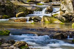 Cascading Wild Mountain Trout Stream. A spring view of a small cascading mountain trout stream located in the mountains, Jefferson National Forest, Virginia, USA royalty free stock image