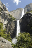 Cascading Yosemite Falls in spring Stock Photo