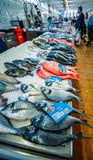 Wide angle view of fresh local fish in the village market in Cascais, Portugal. Cascais, Portugal - June 9th, 2018: Wide angle view of fresh local fish in the Stock Images