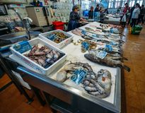 Wide angle view of fresh local fish in the village market in Cascais, Portugal. Cascais, Portugal - June 9th, 2018: Wide angle view of fresh local fish in the Royalty Free Stock Photos