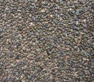 Cascalho cimentado pavimentando a terra Fotos de Stock