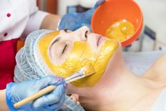 Cascas da massagem e do facial no salão de beleza fotos de stock