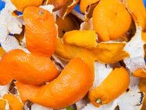 Cascas secadas das laranjas e dos mandarino Fotos de Stock