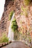 Cascata, Ilha da马德拉岛,葡萄牙 免版税库存图片