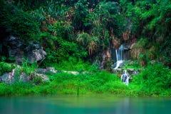 cascata Fotografia Stock