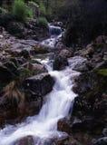 cascata Imagem de Stock Royalty Free
