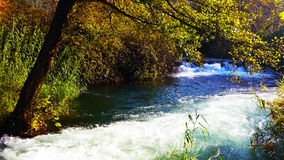 cascata Fotografia de Stock