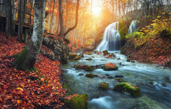 Cascata al fiume della montagna nella foresta di autunno al tramonto Immagini Stock Libere da Diritti