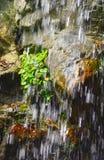 Cascata al giardino botanico di Singapore Fotografia Stock