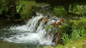Cascata al giardino del castello di Canon, Francia stock footage
