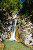 Cascata alla foresta di Konigsee Fotografia Stock Libera da Diritti