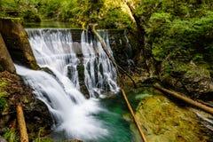 Cascata alla gola di Vintgar, bellezza della natura Immagini Stock Libere da Diritti